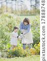 園藝 水生植物 女兒 17888748