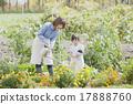 父母和孩子园艺 17888760
