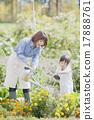 園藝 水生植物 女兒 17888761