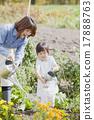園藝 水生植物 女兒 17888763