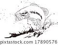 黑鲈 鱼 捕鱼活动 17890576