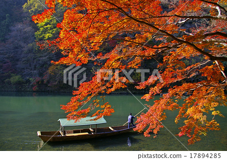 Autumn leaves of Arashiyama 17894285