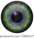 Eye iris generated hires texture 17896157