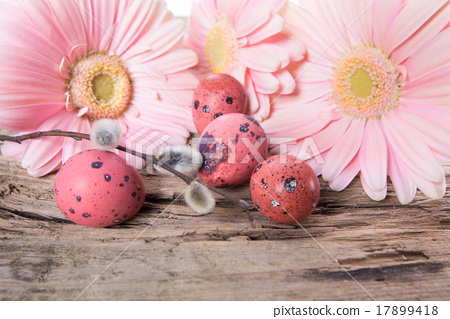 Easter eggs with gerbera daisy flowers 17899418