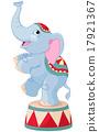 Circus Elephant 17921367
