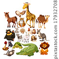 Different type of wild animals 17932708