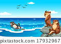 Sea otter living in the ocean 17932967