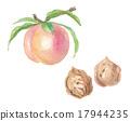 桃子 水蜜桃 桃 17944235