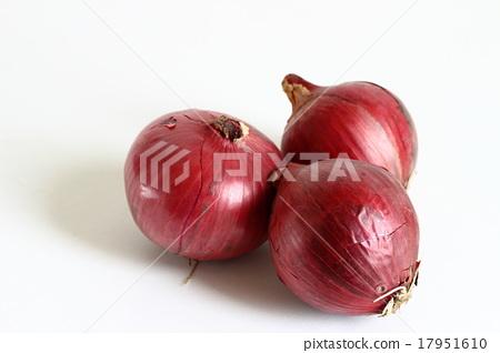 Purple onion 17951610
