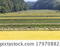山田的风景 17970882