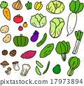 蔬菜 一套 矢量 17973894