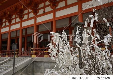 Omikujimubi tree Japanese landscape 17977426