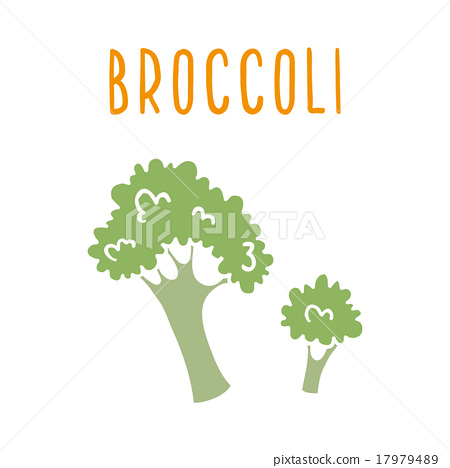 Broccoli isolated on white.  17979489