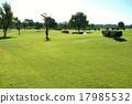 高爾夫 草坪 高爾夫球場 17985532