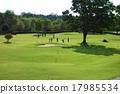 盛大的高爾夫 高爾夫 高爾夫球場 17985534