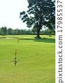 盛大的高爾夫 高爾夫 高爾夫球場 17985537