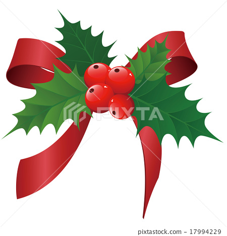 Holly 17994229