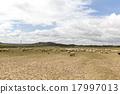 草原上的羊群 17997013
