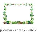 蔬菜 框架 帧 17998617