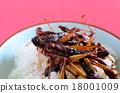 食物 食品 虫子 18001009
