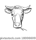 cow, vector, animal 18006609