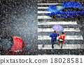 pedestrian crossing in the heavy snowfall 18028581