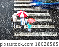 pedestrian crossing in tzhe snowstorm 18028585