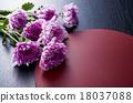 菊花 花朵 花卉 18037088