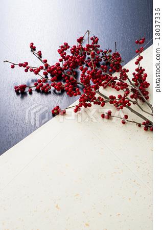 水果 植物 植物学 18037336