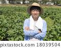 農業 農作 農事 18039504