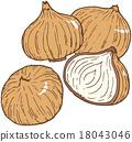 onion, vegetables, vegetable 18043046