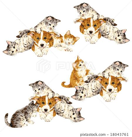 毛孩 貓 貓咪 18043761