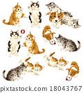 動物 莖 貓 18043767