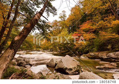 Tono-shi heavy gorge 18058748