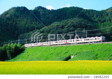 東武日光線快車沿著島根的堤岸下行 18082265