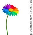Rainbow daisy flower background. Vector. 18091316