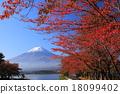 ภูเขาฟูจิ,ภูเขาไฟฟูจิ,ต้นเมเปิล 18099402