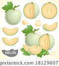 Set of cantaloupe melon fruit in various styles 18129607