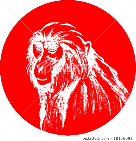 Monkey's Japanese-style illustration 18136992