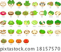 vegetables, vegetable, fruit 18157570