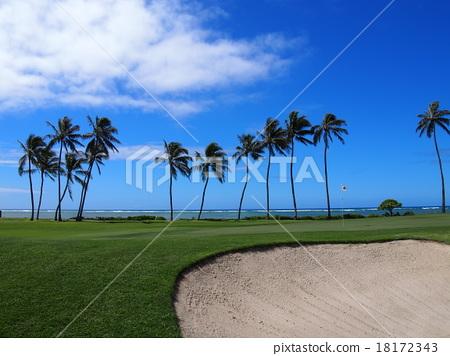 와이 알레이 골프장 18172343