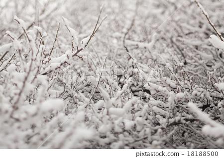 วิวหิมะนุ่มนวล 18188500