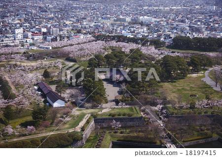 Goryokaku Park 18197415