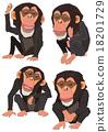 黑猩猩 申年 猴 18201729