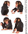 黑猩猩 申年 猴 18201735