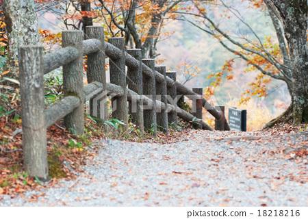 Zao Takimidadai步行道 18218216