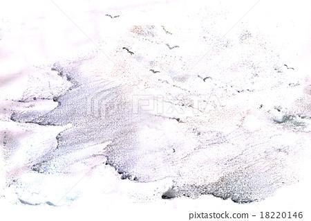 seagulls 18220146