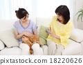 pet, pets, cat 18220626