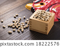 the last day of winter in the traditional lunar calendar, the bean-scattering ceremony, bean 18222576
