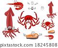 salmon, squid, vector 18245808